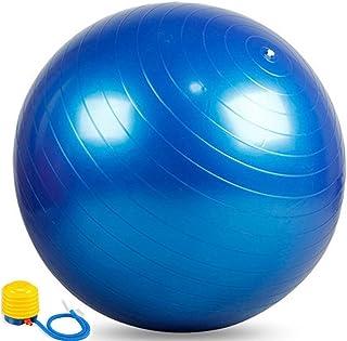 25 Blue Exercise Ball Stability Ball Fitness Ball Swiss Ball Yoga Ball Balance Ball with Air Pump