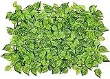 Malla De Ocultacion Jardin Ocultacion Jardin Decoración de jardín Pantalla de privacidad Panel de cercado Capullos de flores Paneles de seto de hojas Seto de madera Enrejado retráctil Valla Proyecc