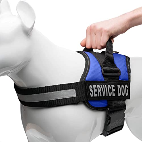 PetsUp Service Dog Harness, Chest Body Belt for Dogs (65-88CM Girth), Blue