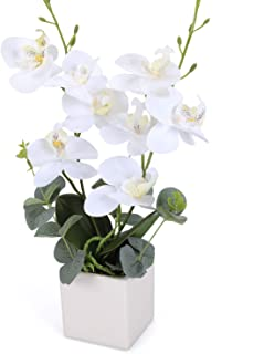 RERXN Artificial Orchid Bonsai Fake Orchid Arrangement 3 Heads PU Potted Phalaenopsis Plant for Home Party Decor(White)