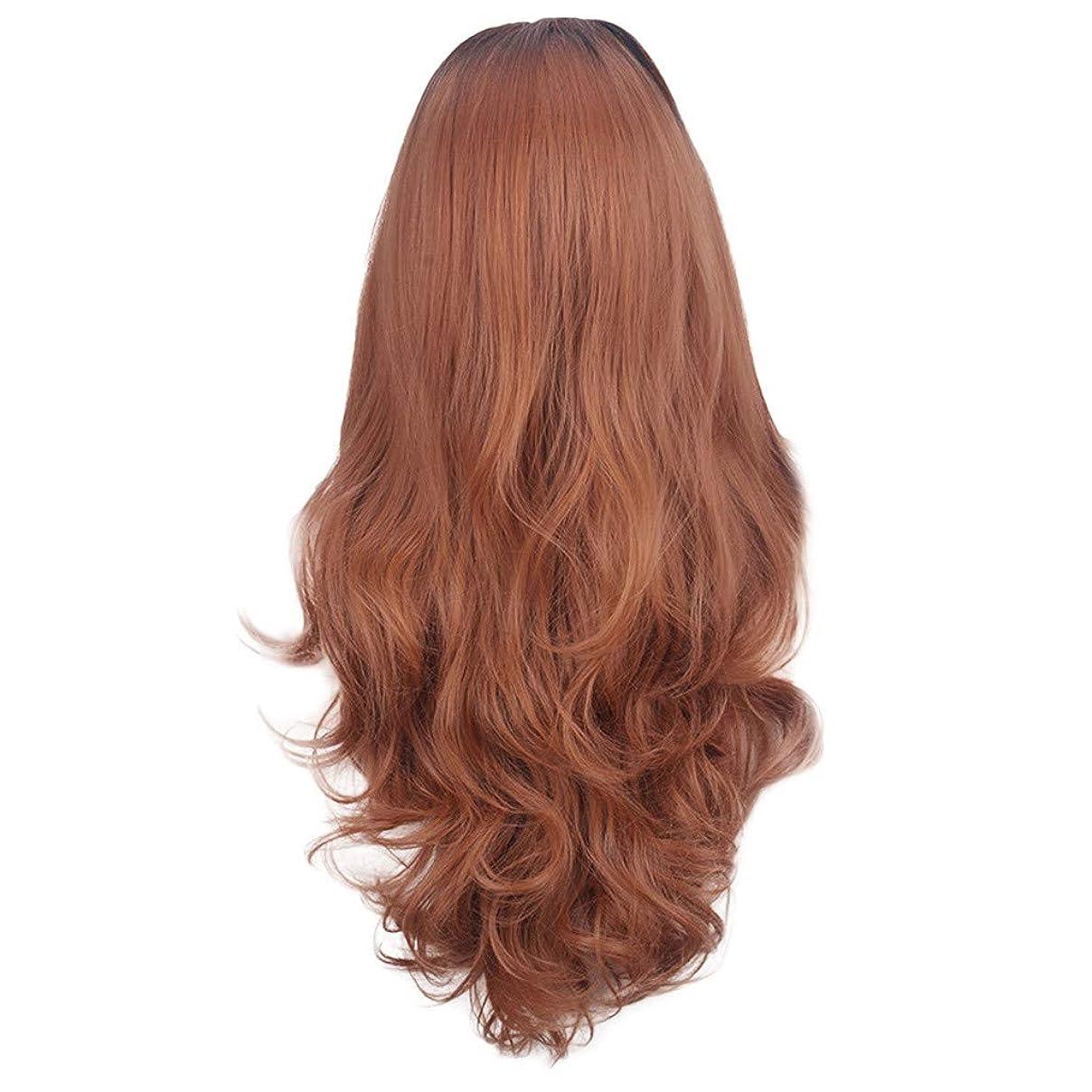 描写枠水っぽい茶色の女性のかつらの長い巻き毛のフロントレースかつら80CM