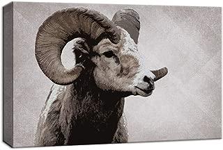 Best goat wall art Reviews