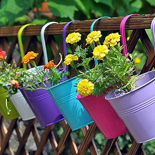 """LOVOUS® 6.1"""" x 4.5"""" x 5.7"""" Large 3 PCS Iron Hanging Flower Pots Balcony Garden Plant Planter, Wall Hanging Metal Bucket Flower Holders"""