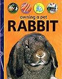 Owning A Pet: Rabbit