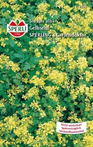 Sperli-Samen SPERLI's Gartendoktor Gelbsenf, 250g