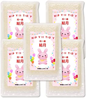 一升 米 1 歳 2合*5個 一升餅の代わり 新潟産コシヒカリ (うさちゃん)