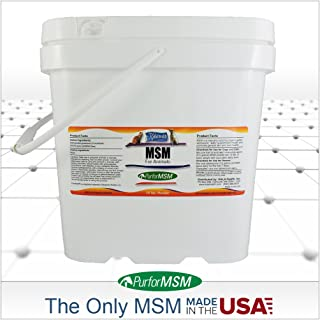Best msm powder for dogs Reviews