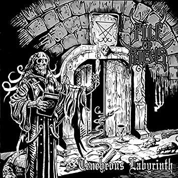 Tenebrous Labyrinth