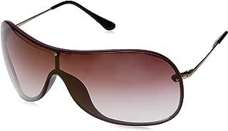 RB4411 Aviator Sunglasses
