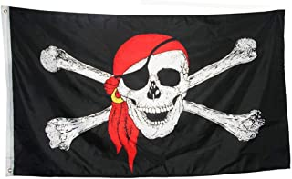 pirates jolly roger flag pittsburgh