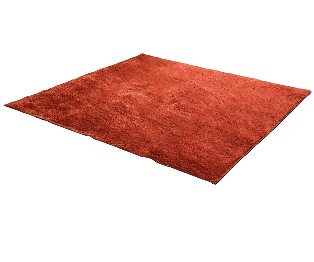 基準お父さん変化するラグ ラグマット 4畳 ホットカーペットカバー レスト 200×300cm オレンジ 洗える 床暖房 対応 シャギー調 【IB】 #3959239