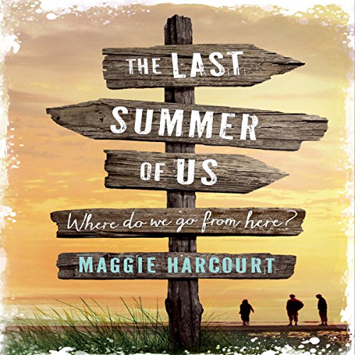 The Last Summer of Us cover art