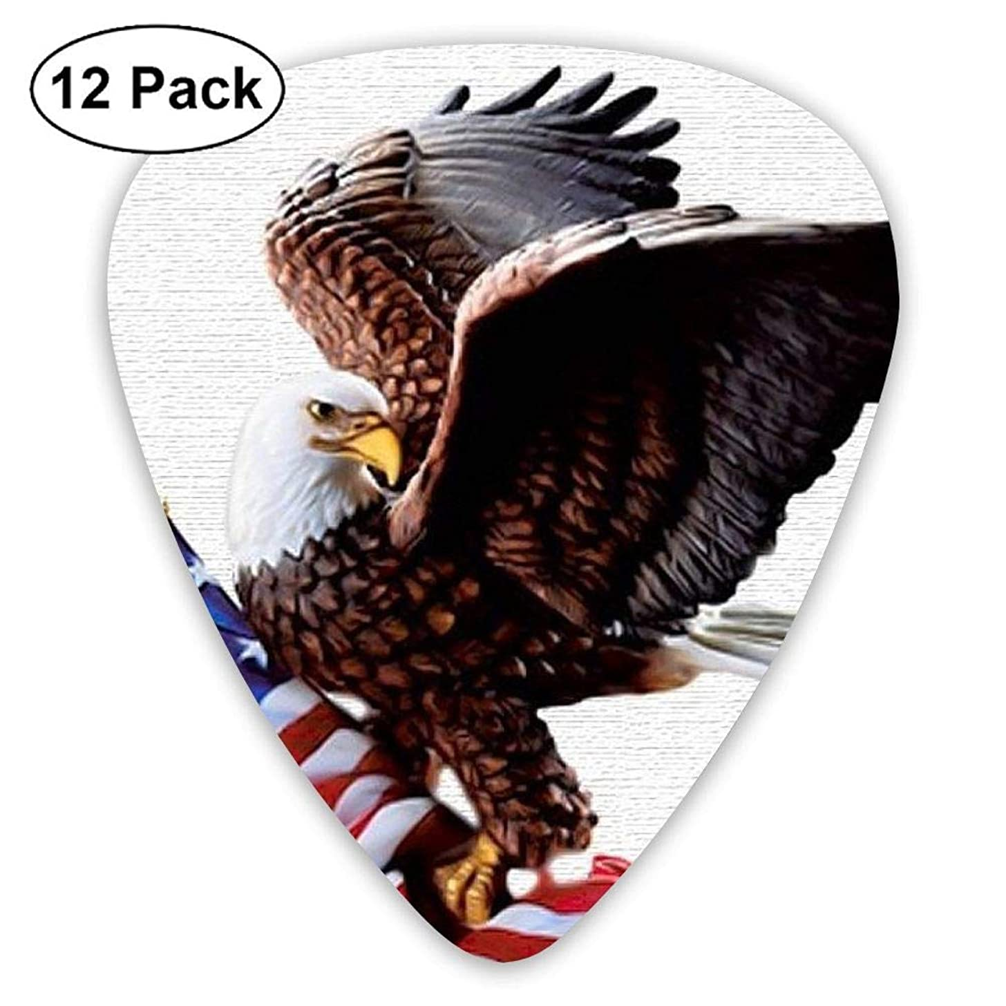 12-Pack Fashion Classic Electric Guitar Picks Plectrums American Eagle Flag Instrument Standard Bass Guitarist