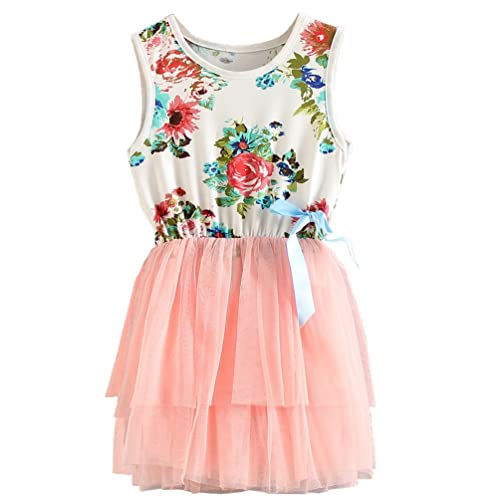 8069d4d763b5 Csbks 1 2 3 4 5 Years Kid Girls Cute Floral Sundress Tulle Tutu Skirt Tank