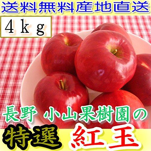 減農薬 長野 生食用 紅玉 りんご A品 約4kg小玉12〜25個入 リンゴ 林檎 生食用 産地直送 小山 NG 9g