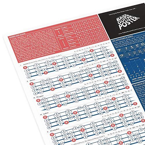 De Really Useful Basgitaar Poster – Bas Gitaar Akkoorden Poster – Geïllustreerde Akkoorden en Toonladders – Leer…