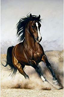 DIY 5D Diamond Painting Kits for Adults Full Drill Horse Diamond Paintings Rhinestone Embroidery Pictures Cross Stitch Arts Crafts for Home Wall Decor Living Room Gifts (Horse,16X20 inches)