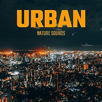 Urban Nature Sounds