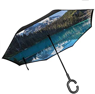 Big Straight Umbrella, with C-Shaped Handle, UV Protection Lake House Decor Lake in Northern Canada with Slim Trees and Snowy Frozen Mountain Novelty Photo Blue White Green