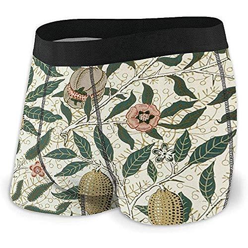 Web--ster Boxer Briefs Shorts Custom Men 'avec des Plantes Et des Fruits sous-Vêtements sous-Vêtements Imprimés Pack XL