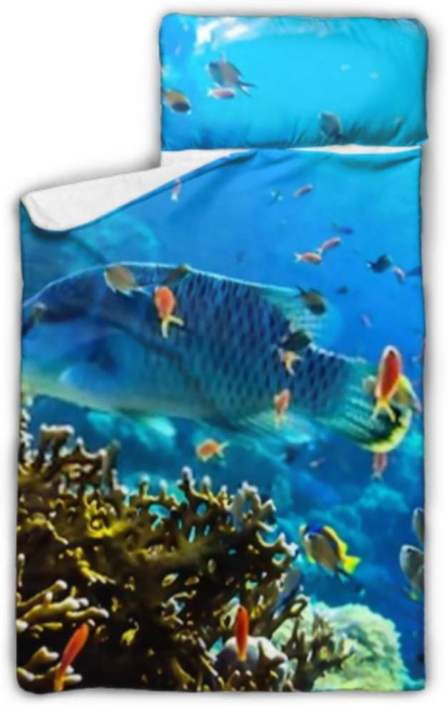 HJSHG Kids Sleeping Bag Underwater Max 49% OFF View Coral Fish Backgro World Deluxe