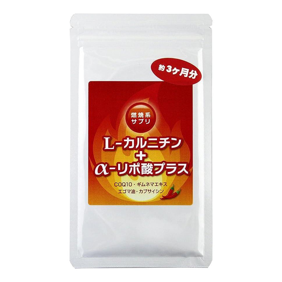 ストレッチウェイトレスブームL-カルニチン+アルファリポ酸プラス(エゴマ油?COQ10配合) (約90日分 (460mg×180粒))