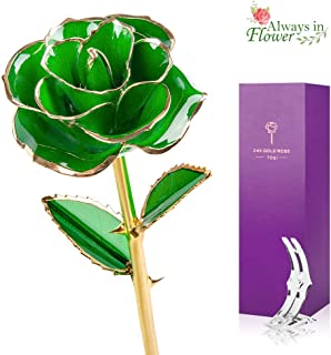 Best green and rose Reviews