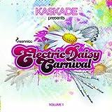 Kaskade Presents Electric Daisy Carnival 1