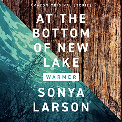At the Bottom of New Lake audiobook cover art