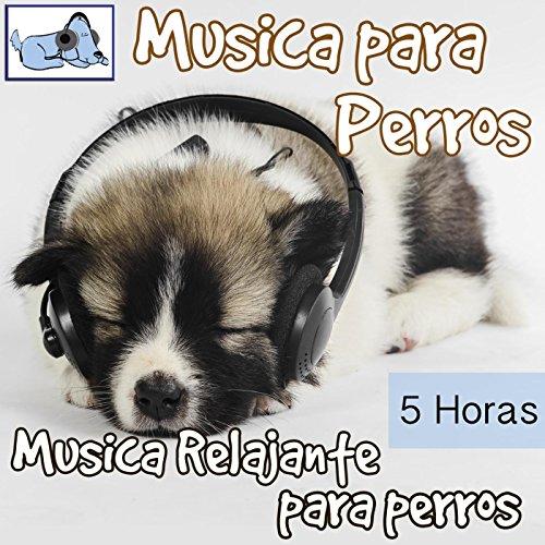 Música para Perros - 5 Horas Música Relajante Para Perros