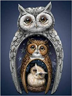 DIY 5D Diamond Painting Kit for Adult Kids, Full Drill Owl Embroidery Painting for Home Wall Decor Painting Arts Craft (Owl(17.3