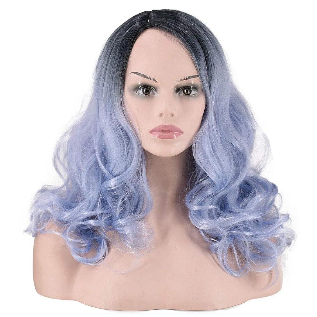 どんよりした寄付拘束するYrattary グラデーション染色部分的な長い巻き毛女性のためのマット高温ファイバーかつら複合毛レースのかつらロールプレイングかつら (色 : Gradient)