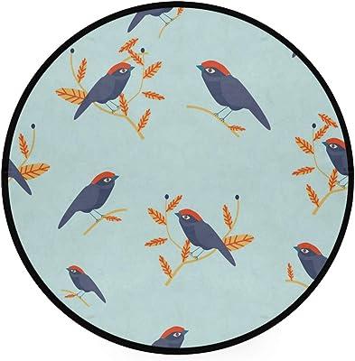 LORONA Cute Bird On Twig Pattern Area Rug Round Non-Slip Carpet Living Room Bedroom Bath Floor Mat Home Decor (3 Feet Round)