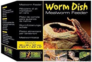Exo Terra Worm Fedding Case