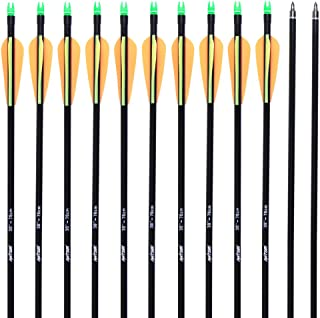 ANTSIR 30 Archery Target Arrow-Hunting Arrow for Adult and Youth Practice,with Double Shaft Steel Field Tip for Compound & Recurve Bow(Pack of 12)