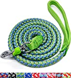 Mycicy Mountain Climbing Rope Dog Leash, 4FT 6FT 10FT Reflective Nylon Braided Heavy Duty Dog Training Leash for Large Medium Small Dogs Walking Leads (Green)