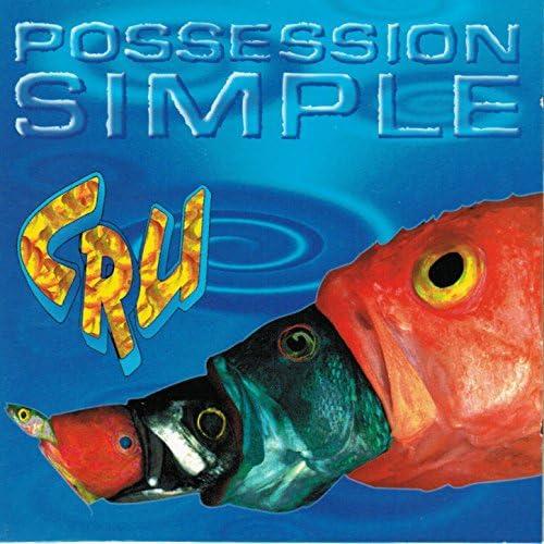 Possession simple