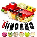 BYETOO Mandoline Slicer,6 in 1 Fruit and Vegetable Slicer, Multi Function Veg Cutter, Interchangeable Stainless Steel with Food Container,Peeler,Hand Protector,Julienne Slice for Potato Tomato Onion