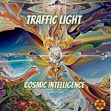 Cosmic Intelligence