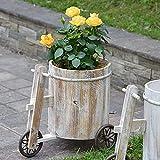 Rong Holz Blumenkasten Fahrrad BlumenküBel, Sukkulenten TöPfe Kaktus Pflanze TöPfe BestäNdig Gegen Sonnenlicht Und Korrosion,FüR Ornament Heimgarten Terrasse