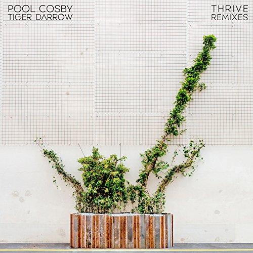 Thrive (Otto Botté Remix) [feat. Tiger Darrow]