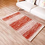 Amida Runner Rugs Non Slip Machine Washable Contemporary Rust Red Stripe Abstract 3'x5' Flat Weave Carpet