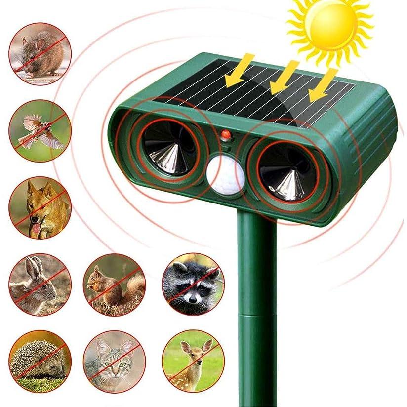 和らげる気分単調な太陽の超音波リペラー抑止害虫猫犬フォックス抑止力ソーラーScarer撥屋外ガーデンツール忌避剤(緑)