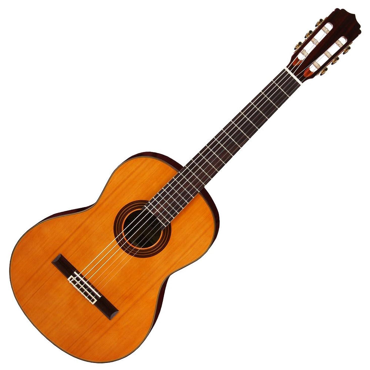 最小化するファーザーファージュフリッパーARIA アリア クラシックギター 表板単板 ソフトケース付 A-30S