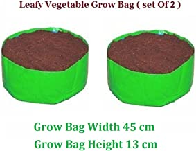 Vgreen Garden Store Terrace Gardening Leafy Vegetable Green Grow Bag (Set Of 2)