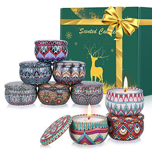 Facio Scented Candles Gift Set, Christmas Candle Pack Natural BeesWax for Stress Relief, Birthday, Bath, Travel, Reusable Tin for birthday gifts,Christmas and wedding gifts (9 Pack-A)