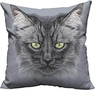 YouXianHome Decorative Couch Pillow Cases Black Dom tic Cat Face and Yellow Ey Whiskers Pet Grey Black Yellow Easy to Wash(Double-Sided Printing) 19.5x26 inch