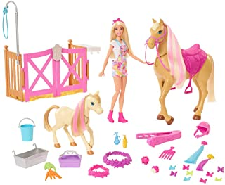 Barbie Groom 'n Care Horses Playset with Barbie Doll (Blonde 11.5 Inch), 2 Horses & 20+ Grooming and Hairstyling Accessor...