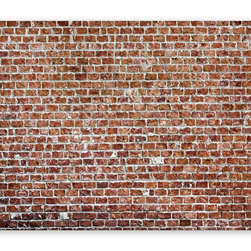 murando Papier peint intissé 300x210 cm Décoration Murale XXL Poster Tableaux Muraux Tapisserie Photo Trompe l'oeil brique texture f-B-0030-a-c