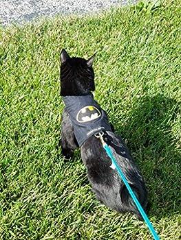 Mynwood Gilet / harnais sécurisé pour chat adulte Motif Batman